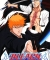 Bleach: Heat the Soul 5