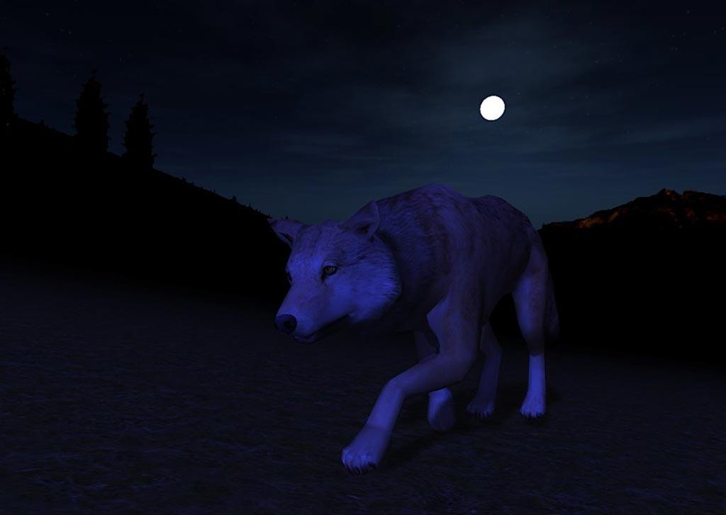 Как Создать Стаю В Игре Wolfquest.Doc